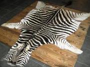 Zebra Skin  -  A+ Grade (ERZEBAA)