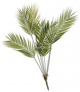 Palm Bunch  -  80 cm (TNN6 49)